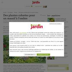 6 plantes colorées pour un massif à l'ombre