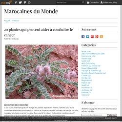 20 plantes qui peuvent aider à combattre le cancer - Marocaines du Monde