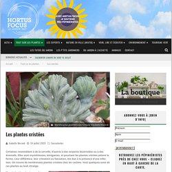 Les plantes cristées