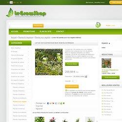 Lot de 100 plantes pour mur végétal extérieur - LeGrowShop.fr ®