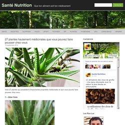 27 plantes médicinales que vous pouvez faire pousser chez vous
