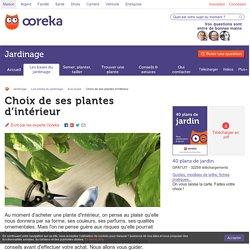 Choix de ses plantes d'intérieur: erreurs à éviter