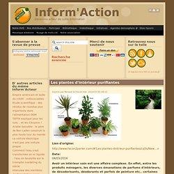 Les plantes d'intérieur purifiantes