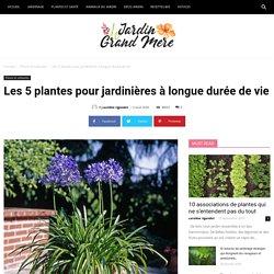 Les 5 plantes pour jardinières à longue durée de vie