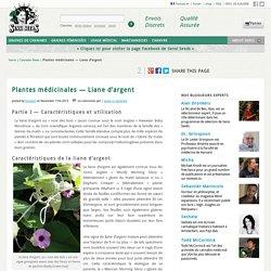 Plantes médicinales — Liane d'argent