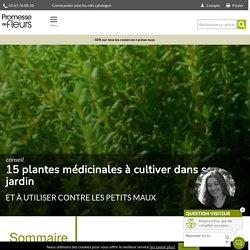 15 plantes médicinales à cultiver dans son jardin - Promesse de Fleurs - Promesse de Fleurs