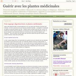 Guérir avec les plantes médicinales: Foie engorgé, digestion lente et plantes médicinales