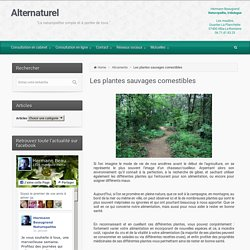 Alternaturel – Les plantes sauvages comestibles