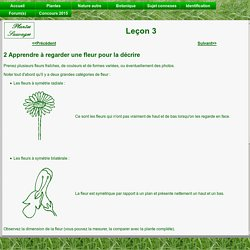 Plantes Sauvages - Leçons