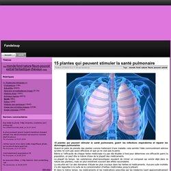 15 plantes qui peuvent stimuler la santé pulmonaire