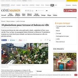 Plantes pour balcon et terrasse :