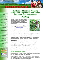 Planting Companion Vegetables and Herbs, and Fruit Tree Companion Planting.
