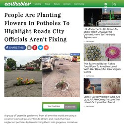 People Are Planting Flowers In Potholes To Highlight Roads City Officials Aren't Fixing