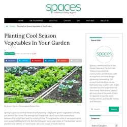 Planting Cool Season Vegetables in Your Garden