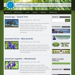 Plants Archives - Entheology.com