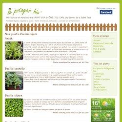Plants d'aromatiques bio - Le Potager Bio