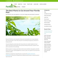 The Best Plants to Go Around Your Florida Pool - Fertilizer for Less