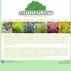 MotherPlants - A Green Roof for your Building