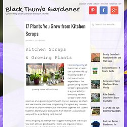 17 Plants You Grow from Kitchen Scraps | Black Thumb Gardener