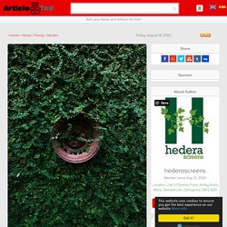 Plants for Living Walls UK Article
