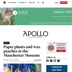 Paper plants and wax peaches at the Manchester Museum