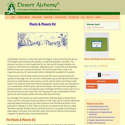 Plants & Planets Kit