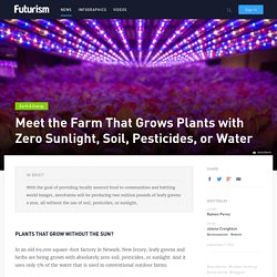 Meet the Farm That Grows Plants with Zero Sunlight, Soil, Pesticides, or Water