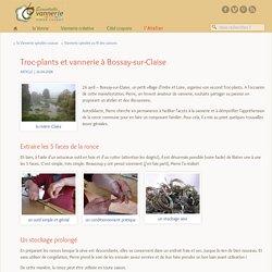 Troc-plants et vannerie à Bossay-sur-Claise