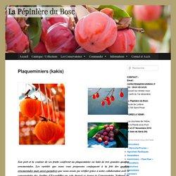 Kakis – Plaqueminiers