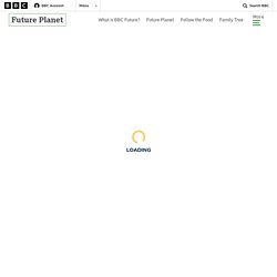 Why plastic waste is an ideal building material - BBC Future