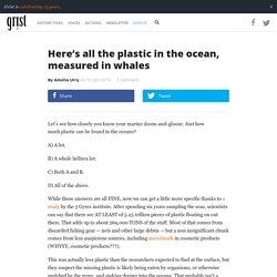 Here's all the plastic in the ocean, measured in whales
