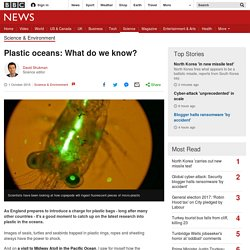 Plastic oceans: What do we know?