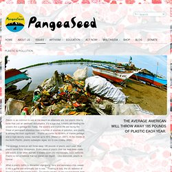 PLASTIC & POLLUTION - PangeaSeed