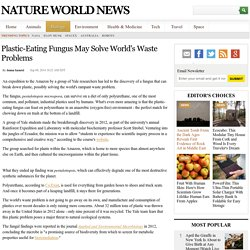 Plastic-Eating Fungus May Solve World's Waste Problems
