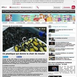 RTS_CH 24/11/15 A BON ENTENDEUR - Ce plastique qui donne la chair de moule!