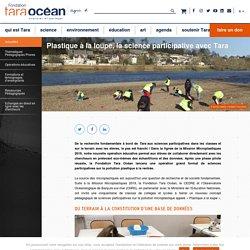 Plastique à la loupe, la science participative avec Tara