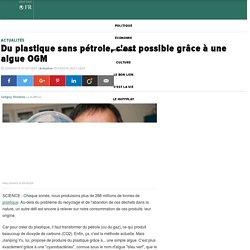 Du plastique sans pétrole, c'est possible grâce à une algue OGM