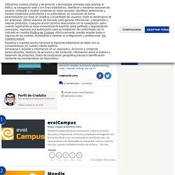 Plataformas e-learning (LMS)