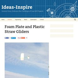 Foam Plate and Plastic Straw Gliders