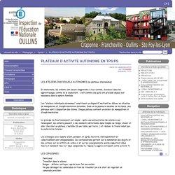 PLATEAUX D'ACTIVITE AUTONOME EN TPS/PS - Oullins