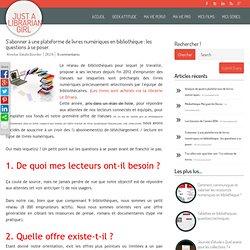 S'abonner à une plateforme de livres numériques en bibliothèque : les questions à se poser.