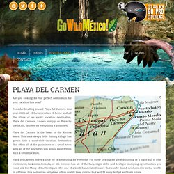 Find things to do in Playa Del Carmen