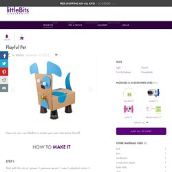 Playful Pet: a littleBits Project by littleBits