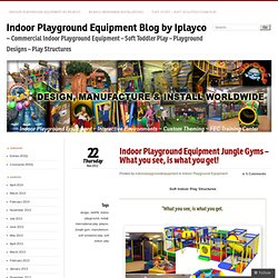 Indoor Playground Equipment Jungle Gyms – What you see, is what you get!