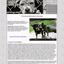 Please Help Stop Organized Dog Fighting