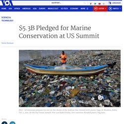 $5.3B Pledged for Marine Conservation at US Summit