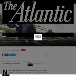 Pleistocene Park - The Atlantic