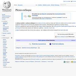 Plexus cœliaque