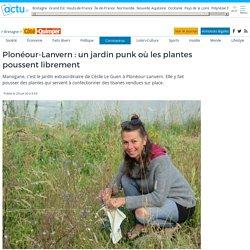 Plonéour-Lanvern : un jardin punk où les plantes poussent librement