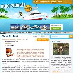 Plongée Bali - Guide complet en Français de la Plongée Sous Marine (Bali)